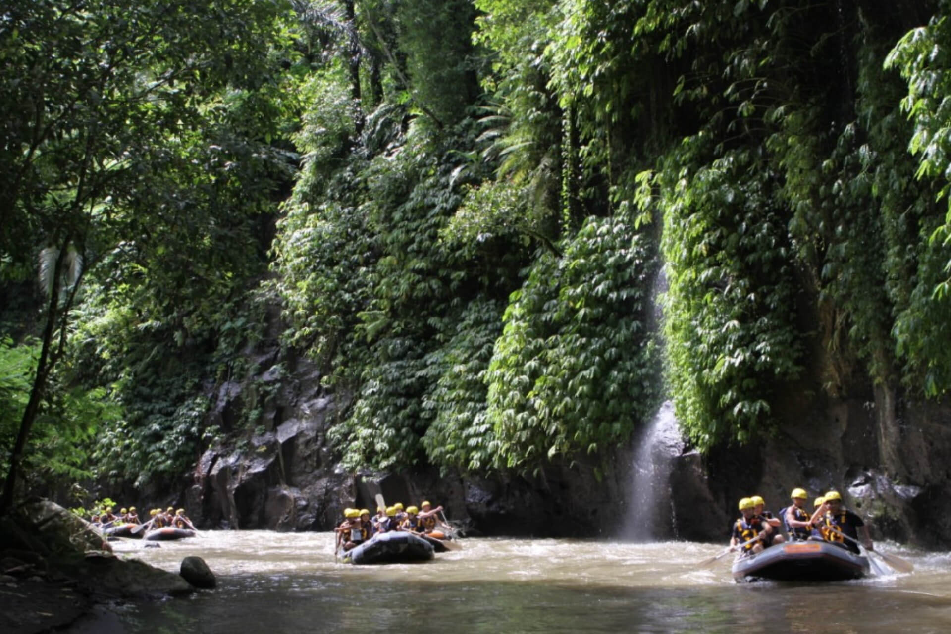 Bali Rafting Adventure forest scenery and pristine wildlife