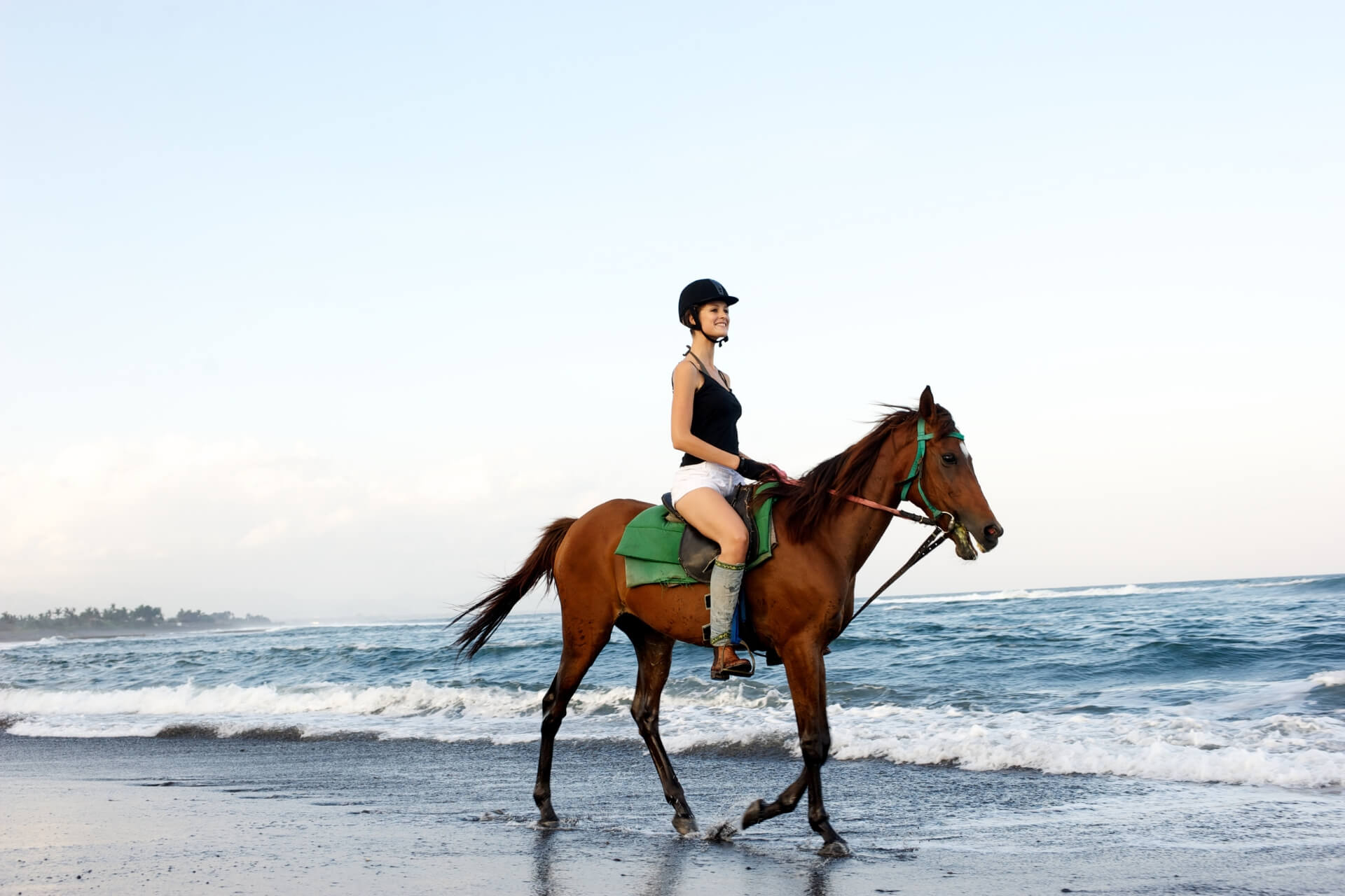 Horse Riding Adventure at Saba Beach